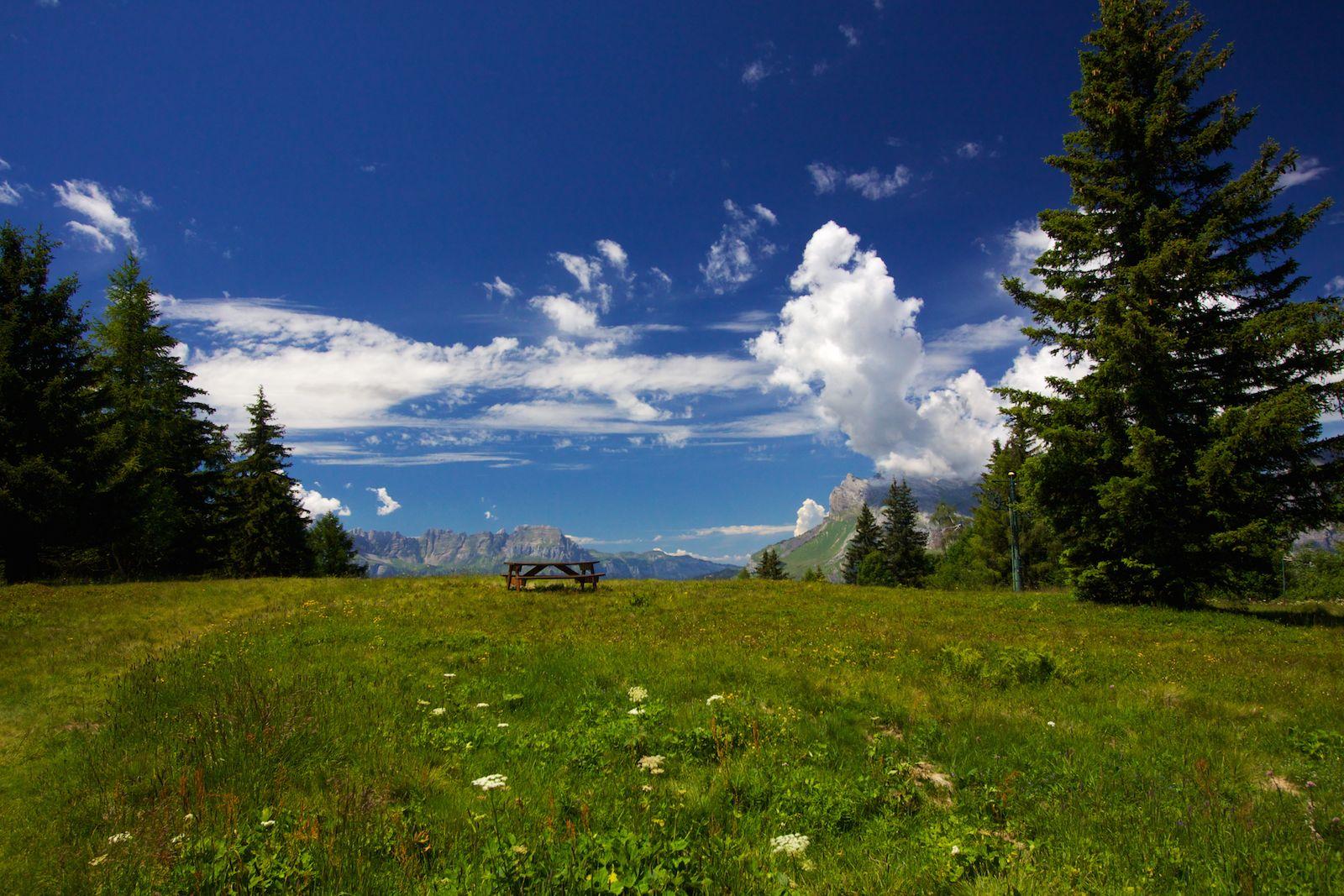 Alpine Picnic Table